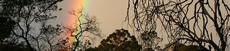 rainbow_450px